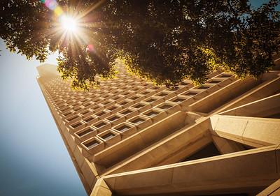 Transamerica Pyramid & Sunstar