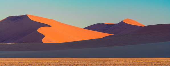 Colours & Contrasts of the Namib Desert