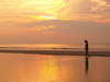 Sunrise Silhouette 3 - Hunting Island
