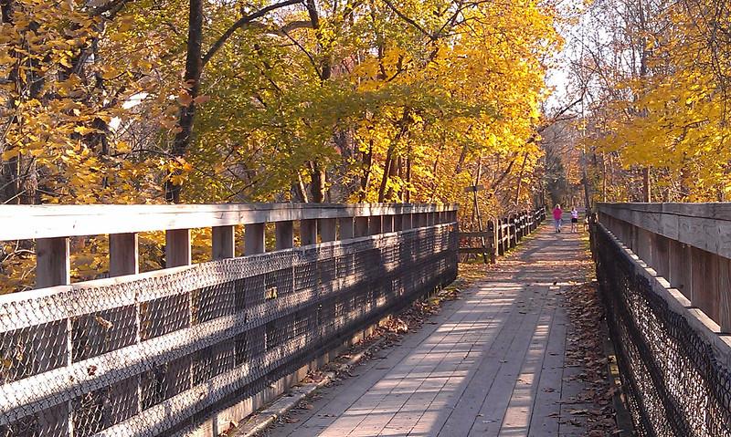 Footbridge over the Unami  1