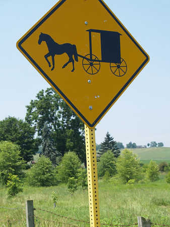 Sign 8 - Amish buggy caution sign