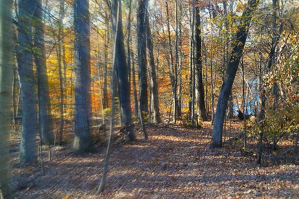 Perkiomen Trail 5