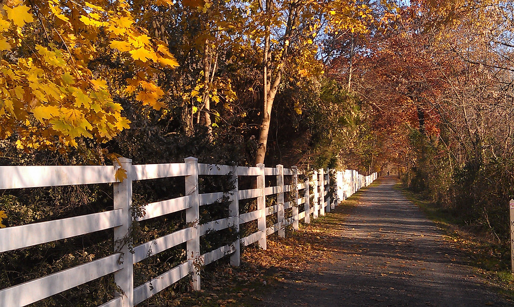 Perkiomen Trail with Fence