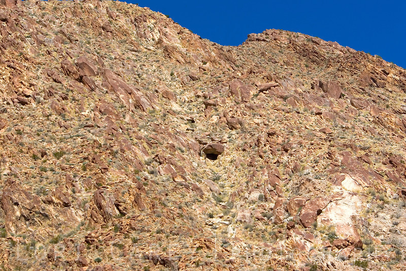 <p>While scanning the cliffs for sheep I spotted this cave high above. </p> <br><p>The colors of the rock and plant life in Anza-Borrego provide the perfect natural camouflage for the sheep; they are almost impossible to spot unless they are moving.</p>