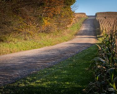 10/11/19  ©John Schiller Photography