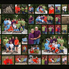 Family Collage ~ Wall Hanging