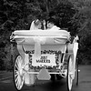 Wedding Carriage Ride ~ Just Married!