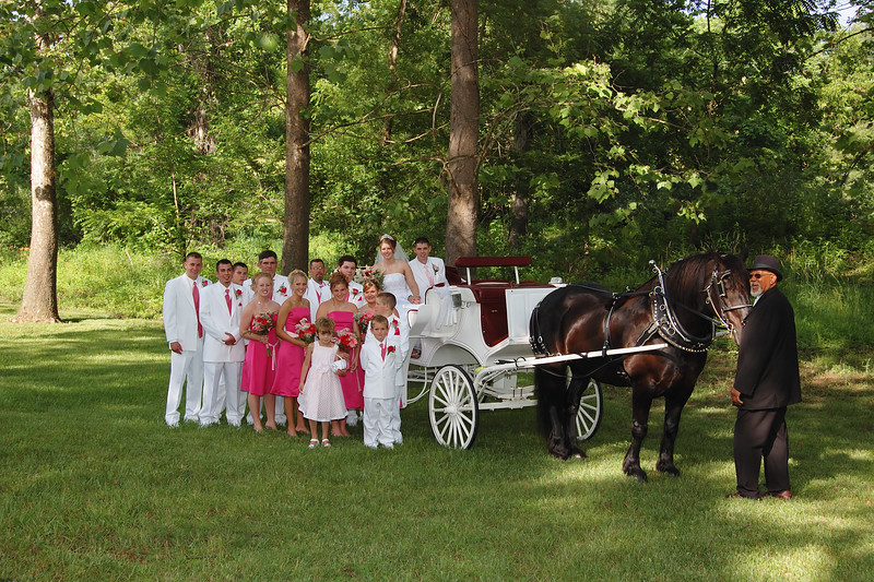 Bridal Party Portrait Near the Horse Drawn Carriage.