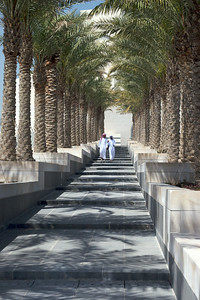 Palm-lined steps provide a shaded pedestrian approach. Museum of Islamic Art, Doha, Qatar.