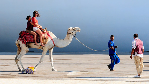 Desert Camel Ride / Tunisia