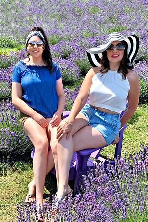 In the Lavender / Canada