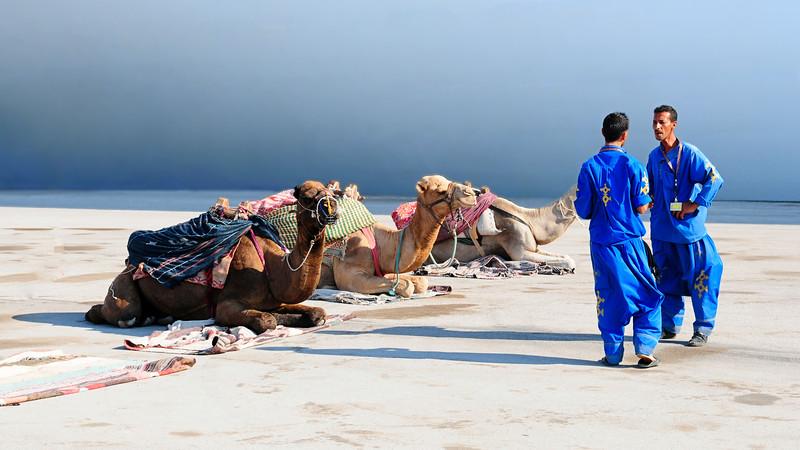 Bedouins / Tunisia