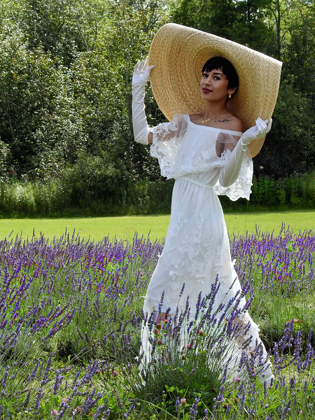 Lavender Glory / Canada