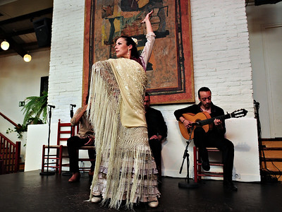 Flamenco Dancer / Spain