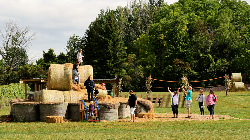 Fun on The Farm / Canada