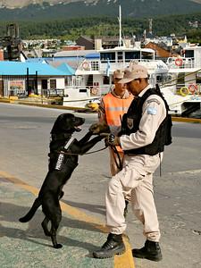 Port Security - Ushuaia / Argentina