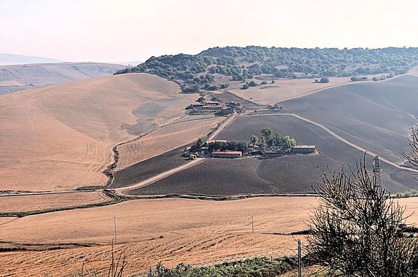 Landscape of Tuscany / Italy