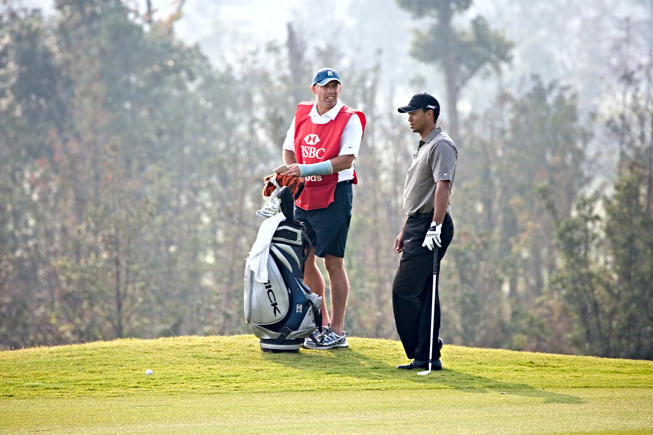 3) Tiger w Caddy