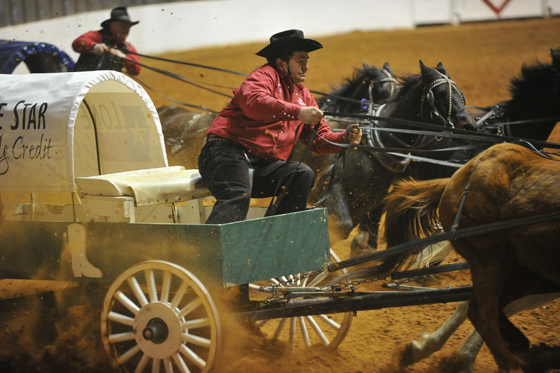 Chuck wagon racing at the FT Worth Rodeo