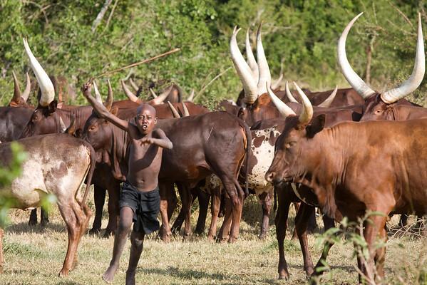 Uganda. June 2008