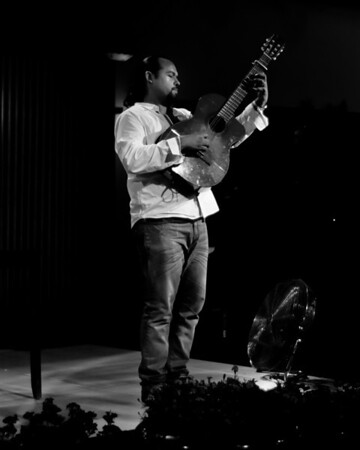 Gypsy Guitarist