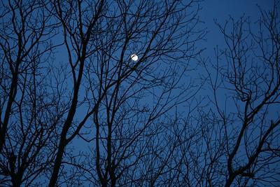 IMG#0087  North Carolina Moon