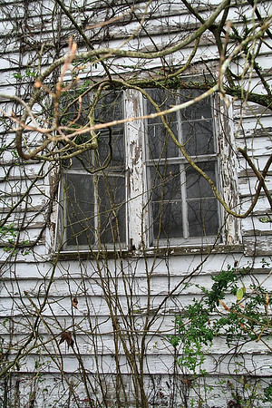 IMG#0097 Original Harrell Homestead 75+ years...still standing but vacant and neglected in 2009.