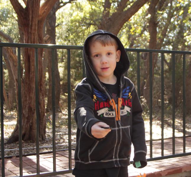 Round Rock train & Zilker garden