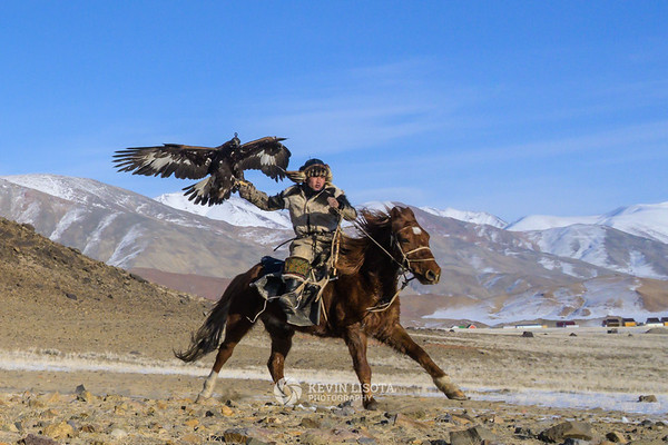 Bazarbai rides with his golden eagle