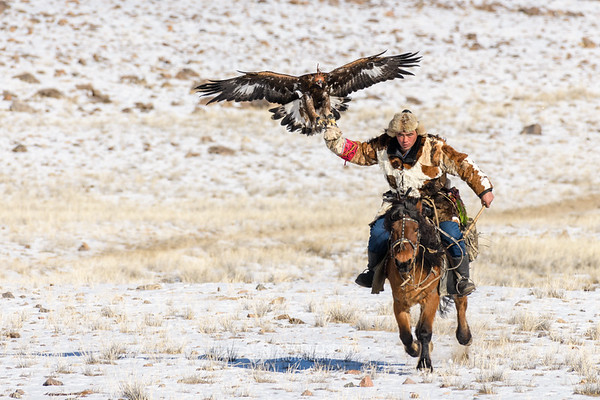 Jenisbek rides with his golden eagle