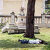 Sleeping on the grass<br /> Mysore, India