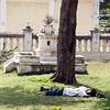 Sleeping on the grass<br /> Mysore, India