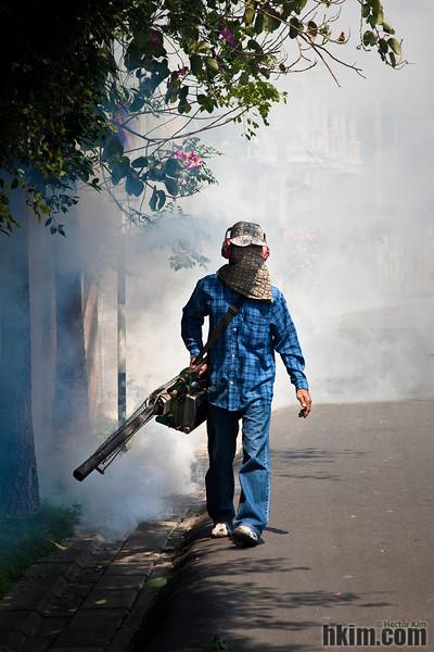 The Exterminator<br /> Chiang Mai, Thailand