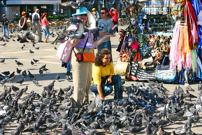 "Pigeons galore. Reminds me of the homeless lady in Central Park in the movie ""Home Alone 2"". Venice Italy in San Marcos Square."