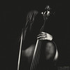 The Anonymous Cellist