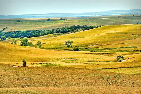 Sunlight Paints the Prairie - Tallgrass Prairie National Preserve, Kansas