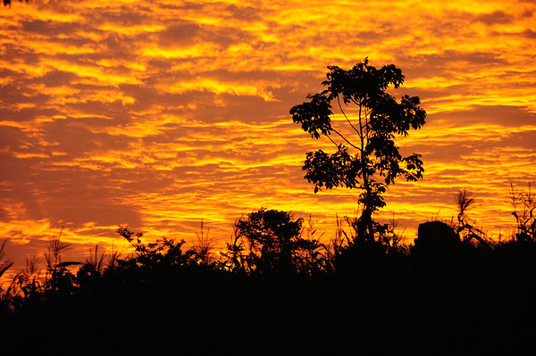 Sunset Colors - Uganda