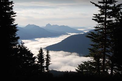 Fog In The Valley Below Mt. Rainier, Washington