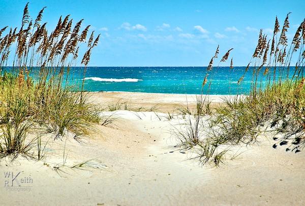 Sand, Surf & Sea Oats - Core Banks, NC
