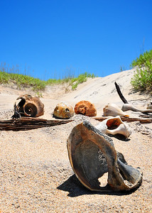 Sand & Sea Shells - Cape Lookout, NC