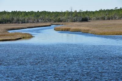 Coastal Wetlands - Off of the North Carolina Intracoastal Waterway