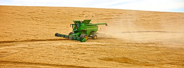 Grain Harvest Time - Palouse Scenic Byway