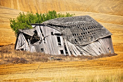 Grain Harvest Finished. Old Barn Fallen Down - Countryside Near Moscow, Idaho