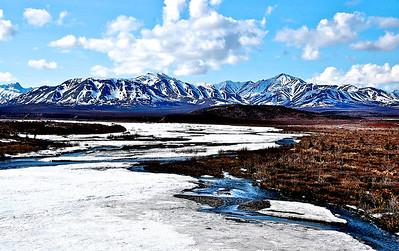 Frozen River - Denali National Park, Alaska