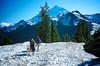 Walking Toward Mt. Baker - Washington