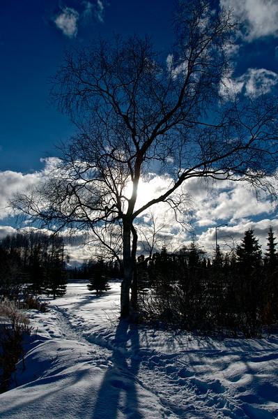 Alaska Visit 02/2013