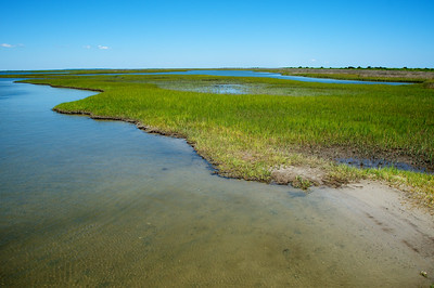 Salt Marsh - Core Banks, NC