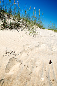 Footprints in the Sand - Core Banks, NC