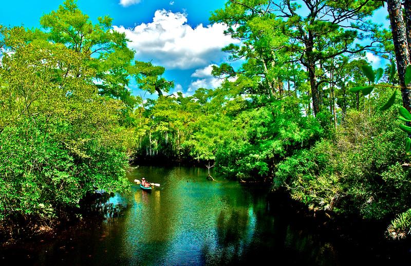 Up A Lazy River - Jonathan Dickinson State Park, Florida