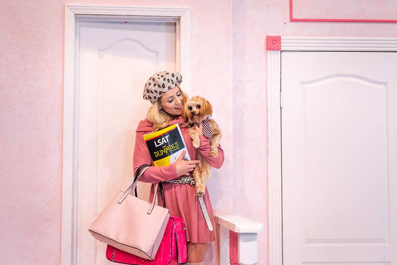 "Amarillo Little Theatre presents ""Legally Blonde""at the Mainstage. Elle Woods played by Terry Martin and Bruiser the dog played by Bentley Crespin. [Shaie Williams for Amarillo Globe News]"